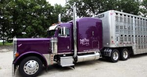 Peterbilt 379 truck lettering & graphics for Travis Feucht Trucking Mayville, Wisconsin