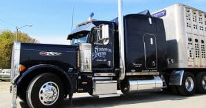 Peterbilt 379 truck lettering & graphics for Chris Schroeder Cashton, Wisconsin